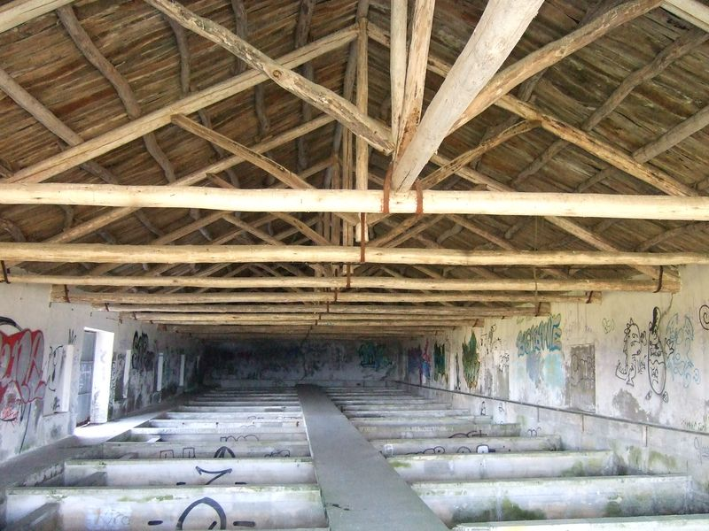 Shellfish Farm - Rinlo