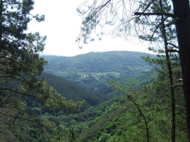 View of Pesoz