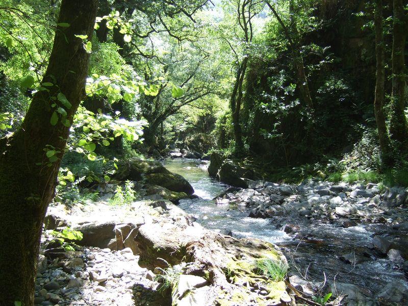 River near Pesoz