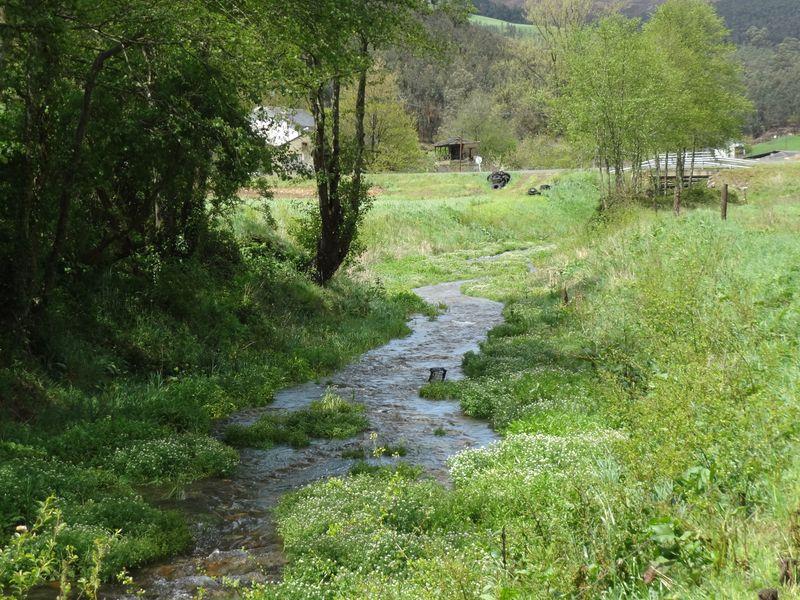 Trabadela stream