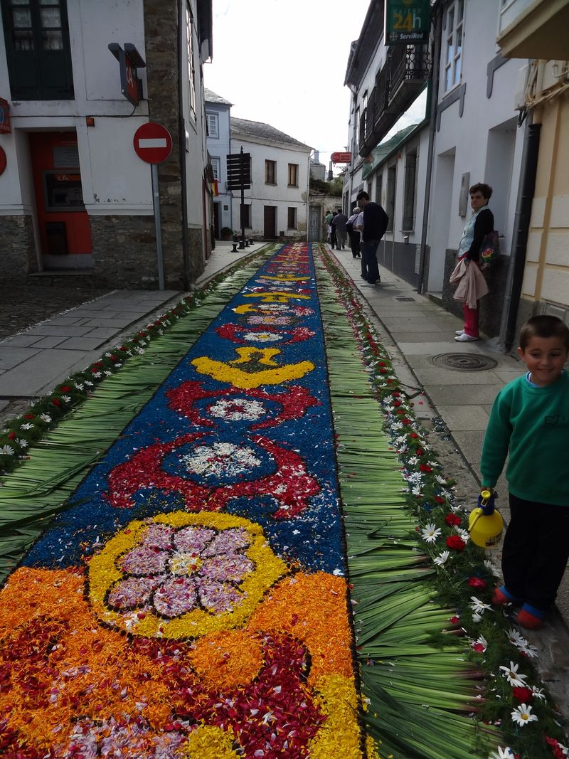 Boy watering flower carpet in Castropol (10)