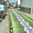 Corpus Christi flower carpets