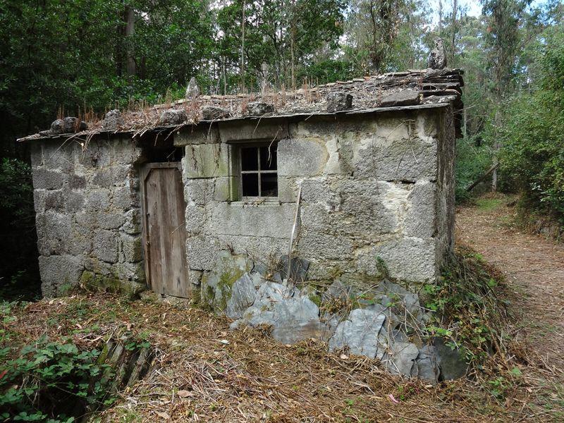 Mill 1 (1)