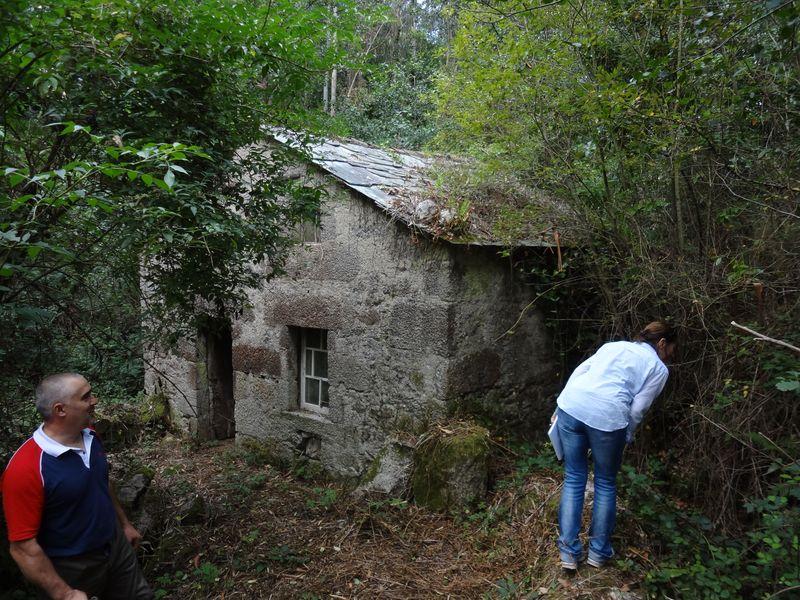 Mill 2 (1)