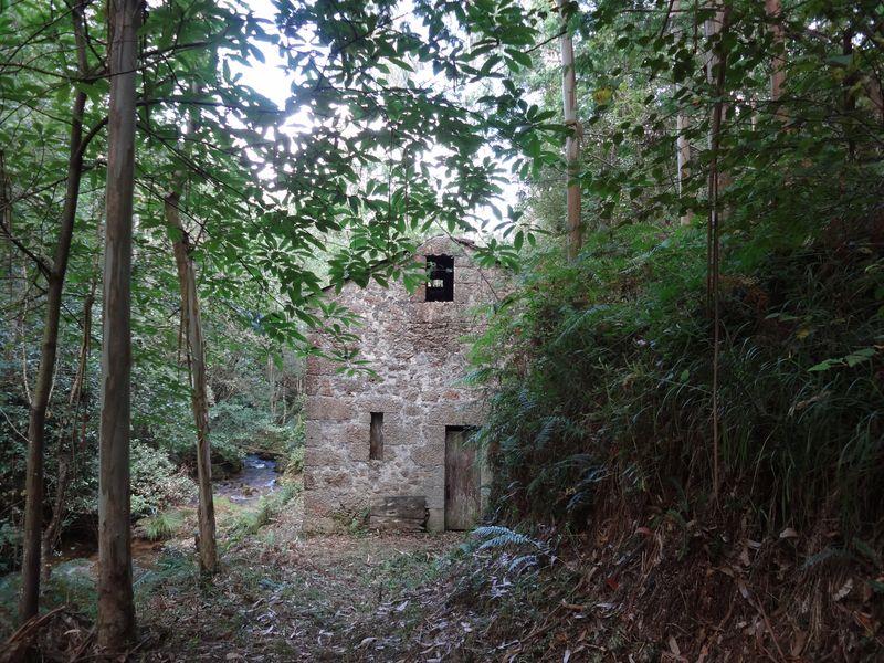 Mill 3